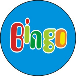Bingo教育培训学校